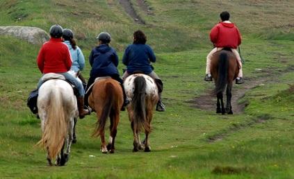 séminaire équitation en Auvergne